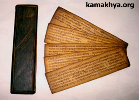 Manuscript-3